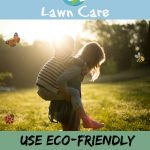 eco friendly lawn care